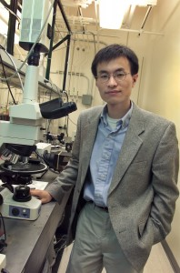 Peidong Yang (Photo by Roy Kaltschmidt, Berkeley Lab Public Affairs)
