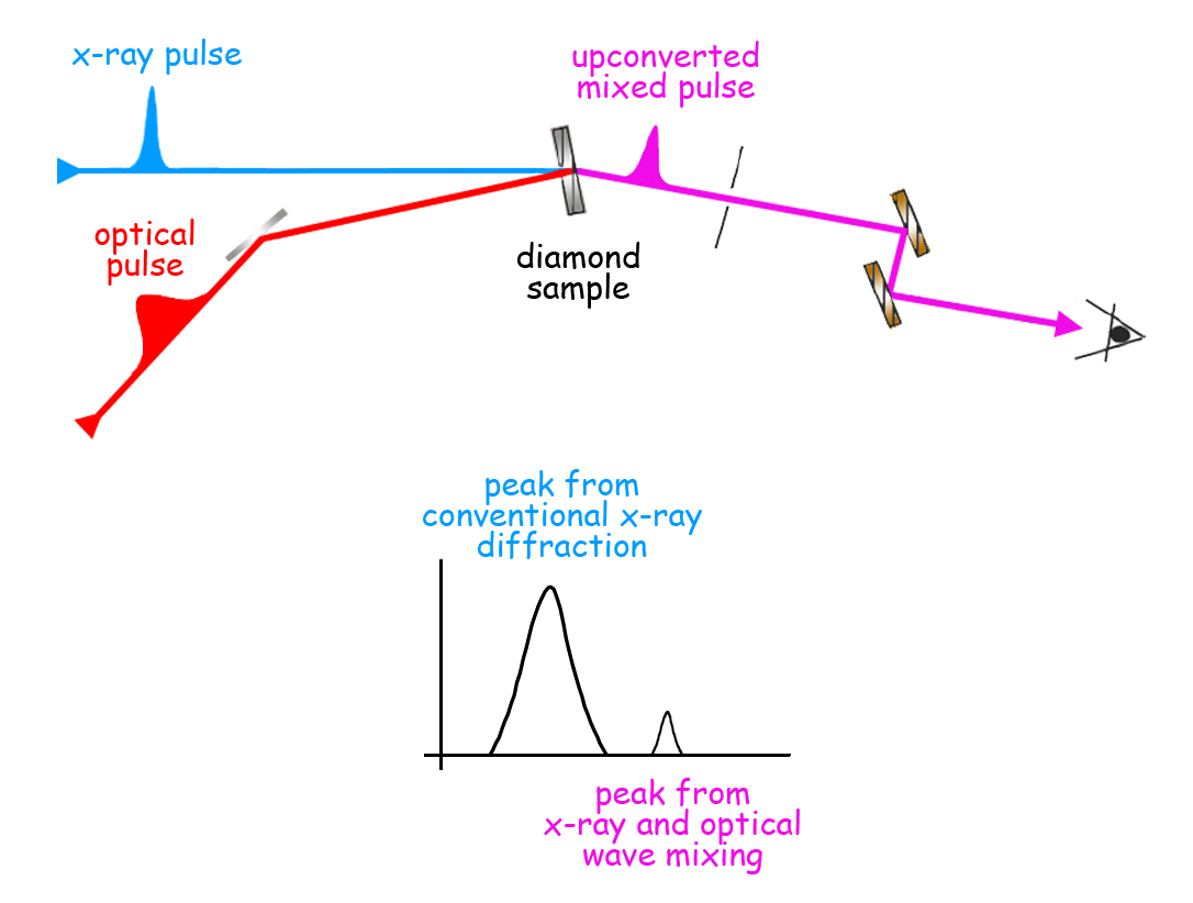"Pulses of 8,000-electron-volt x-rays from the LCLS are synchronized with 1.55 electron-volt pulses from an optical laser, so that both strike the diamond sample at the same time and mix to form upconverted pulses of 8,001.55 electron volts. The detector first sees the diffracted x‑ray pulse, and then, when the sample is slightly ""rocked,"" the slightly more energetic mixed pulse. The optical pulse exerts localized force on the chemical bonds among the carbon atoms."