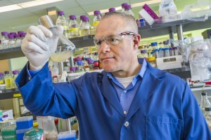 Jay Keasling, CEO of the Joint BioEnergy Institute (JBEI) and Biosciences ALD for Berkeley Lab, is a leading authority on metabolic engineering and synthetic biology. (Photo by Roy Kaltschmidt)